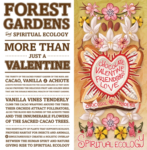 Chocosol Valentine's Card