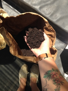 composted food scraps=castings